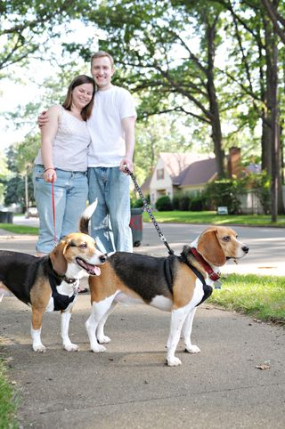 Fred's one exception is his rescue beagle buddy Loosey. Photo by Heather Jowett