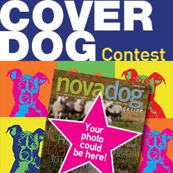 NOVADog_Contest_250x250