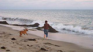 Cian San Onofre Beach