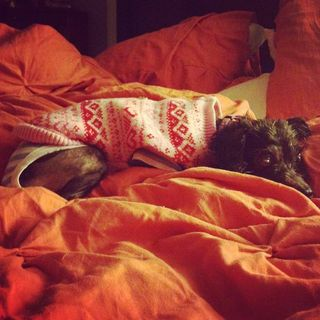 Bedtime_Sweater