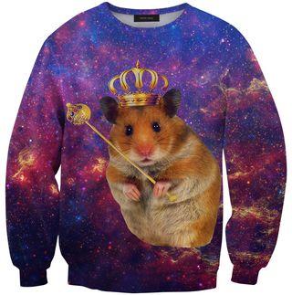 Hamster sweater