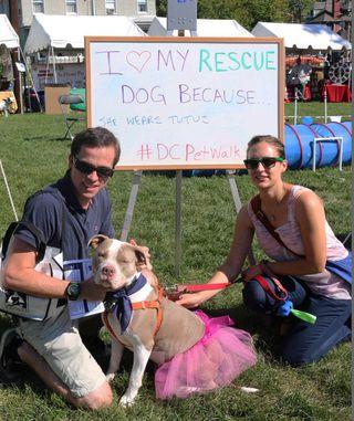 Love_Rescue_Animal_Photo